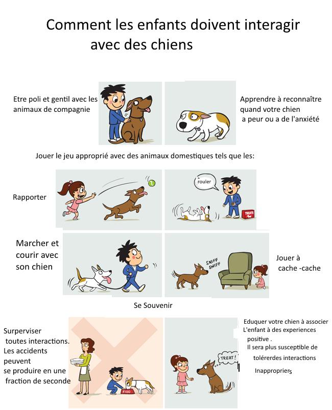apprendre aux enfants a être poli avec les chiens